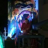 DJ Polo - Monkey mix