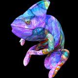 "Chameleon - ""Life"" promo mix June 2014"