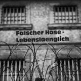 Falscher Hase - Lebenslänglich (Promo Mix) - 12.2011