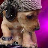 DJ Varon's House Mix 24/05/2013