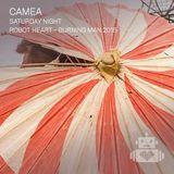 Camea - Robot Heart Burning Man 2015