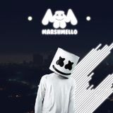 The best of marshmello 2016 - [LEMT MIX]