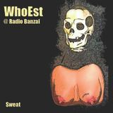 """Chapter Eight"" [WhoEst @ Radio Banzai NL - 09-12-2011]"
