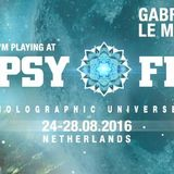 Gabriel Le Mar in Dub at the Chillout of Psy-Fi Festival 2016