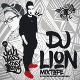 DJ Lion - Non Stop The Party