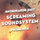 Screaming Soundsystem Promomix Snoeiharde Shit #4
