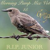 GoldenDjQ Morning Pump Mix vol.15 (CLEAN)