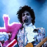 Prince -  Small Club   08/18/88  Het Paard Van Troje, The Hague, Rotterdam, Holland Soundboard