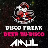 12-05-2014__Disco Freak feat AmuL {Deep Nu Disco}