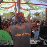 Raja Rana - Psycho Disco Balls