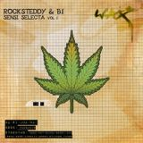 Rocksteddy & B1 present - Sensi Selecta Vol.1