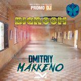 BigRoom #2