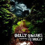 DJ Skully - Gully Breaks (2006)