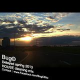 Bug© - Delayed Spring 2013 (HOUSE cleaning mix)