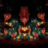 Quantum-D Podcast # 001-Shamanic Dance