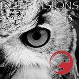 DEEP VISIONS 13