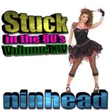 Stuck in the 80's - Volume XIV