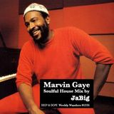 Marvin Gaye Soulful House Music DJ Mix by JaBig - DEEP & DOPE Weekly Wanders #1326