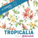 Tropicália - El Steinvorth - 28 Febrero 2015 - Segunda parte