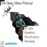 Deep Vibes Podcast Episode 029 (Guestmix. ShivaTronics)