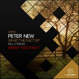 PETER NEW - WHAT THE FACT (Original Mix)