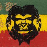Sommersonnenwende 2014 - Funky Fresh Reggae Special