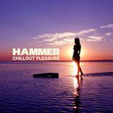 DJ Hammer - Chillout Pleasure 2010
