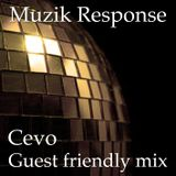 MR Guest Friendly Mix by Cevo