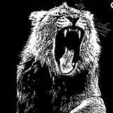 Martin Garrix - Animals (Alvin Remix)