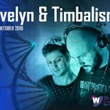 Evelyn & Timbalism @ Sounds Like Techno - The Reunion, De Wissel,  29-10-2016