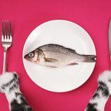 Le TOP #15 : le top 4 de pratiques alimentaires à connaître