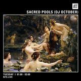 Sacred Pools w/ DJ October - 9th February 2016