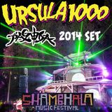 Ursula 1000's Shambhala 2014 Pagoda Set
