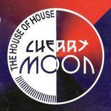 Yves De Ruyter at Cherry Moon (Lokeren - Belgium) - 26 November 1994