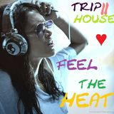 trip2house - Feel The Heat