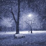 Schneegestöber (Vol.5)