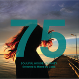 Soulful House Journey 75
