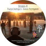 Playa Inspira II: Gonzo Psytrance - 2011