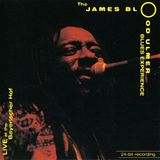 James 'Blood' Ulmer Blues Experience - Live