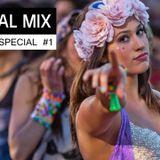 EDM FESTIVAL MIX - Electro House Music | Revealed Special