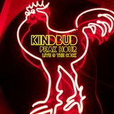 KINDBUD Peak Hour LIVE @ The Cock NYC Deep House