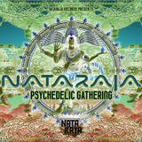 Nataraja Psychedelic Gathering Part 2