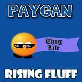 DJ Paygan - Rising Fluff