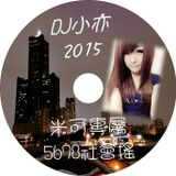 DJ 小亦 2015 (米可專屬 5678 社會搖)