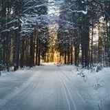 Winter Vibes #1
