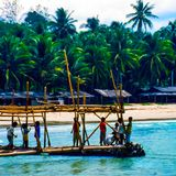 Waltron- Incredible Indonesia