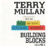 Terry Mullan : Building Blocks