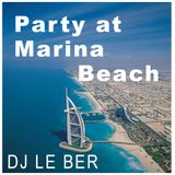 Party at Marina Beach