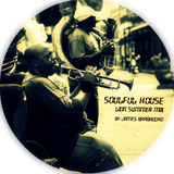 SOULFUL HOUSE | Lion Summer Mix | by James Barbadoro