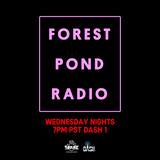 Forest Pond Radio - Ep #3 - DJ Nature